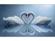- Наборы для вышивания в формате 3D. Отражения любви (7075-3D ) обложка книги