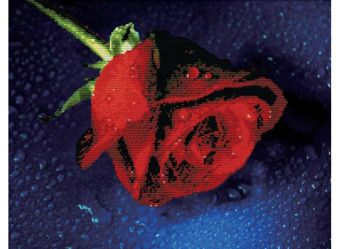 Наборы для вышивания в формате 3D. Прекрасная роза (7003-3D )