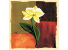 - Наборы для вышивания в формате 3D. Цветок надежды (7031-3D ) обложка книги