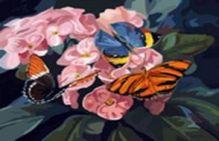 - Живопись на цветном холсте 40*50 . Бабочки на цветах (806-AB-C) обложка книги