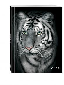 - Блокнот настоящего хищника (Белый тигр). А5 обложка книги