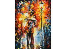 - Живопись на холсте 30*40 см. Поцелуй под дождем (029-AS) обложка книги