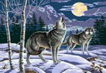 - Живопись на холсте 40*50 см. Ночные охотники (064-CG) обложка книги