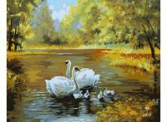 Живопись на холсте 40*50 см. Лебеди в пруду (312-CG)