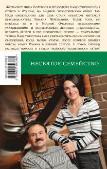 Обложка сзади Несвятое семейство Анна и Сергей Литвиновы