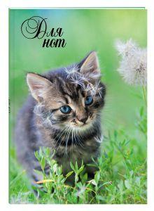 - Нотная тетрадь (большая на клею). Котенок с одуванчиком обложка книги