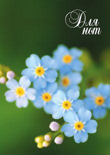 Нотная тетрадь (большая на скрепке). Голубые цветы