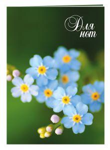- Нотная тетрадь (большая на скрепке). Голубые цветы обложка книги