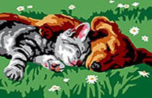 Живопись на холсте 30*40 см. Котенок и щенок (210-CE)
