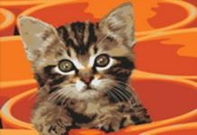 - Живопись на холсте 30*40 см. Котенок в кружке (219-CE) обложка книги