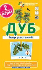 ОМ1. Дуб. Мир растений