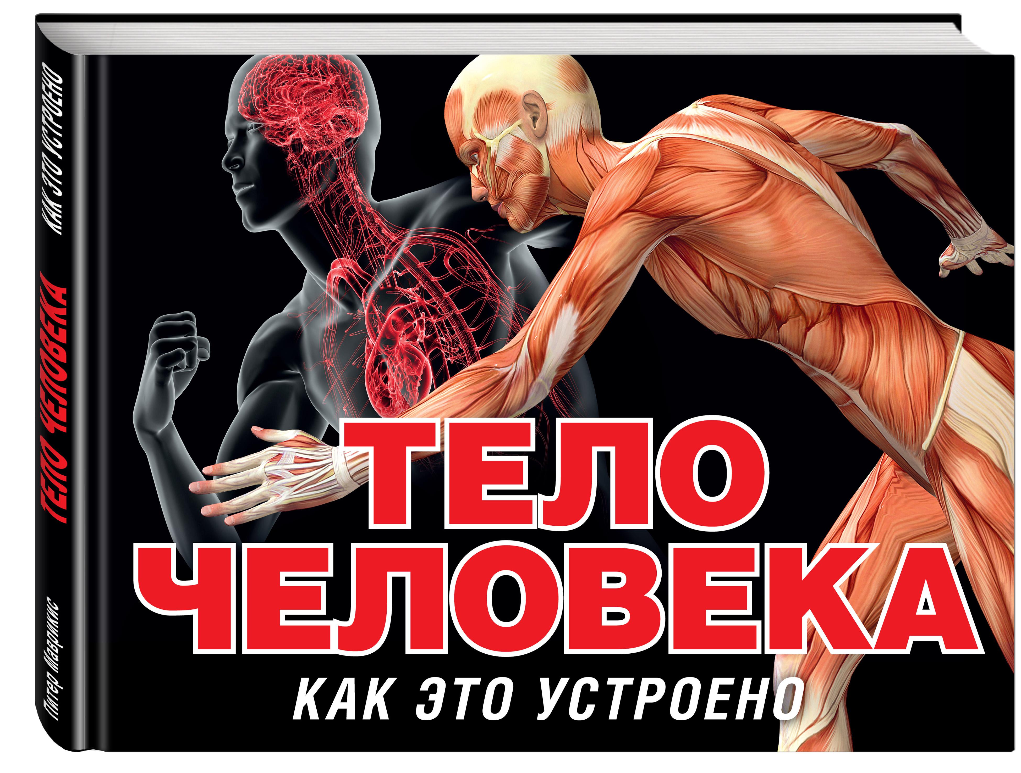 Тело человека (серия Как это устроено) ( Маврикис П.  )