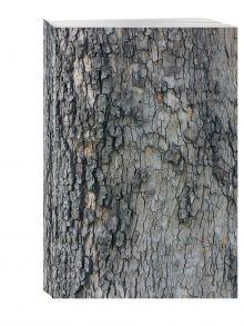 - Блокнот для записей Лесной обложка книги
