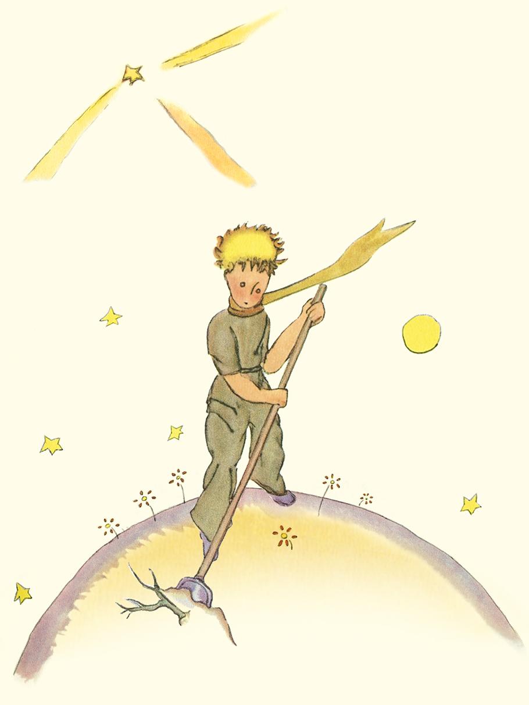 Блокнот Маленький принц. Книга 3