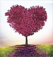 - Наборы для вышивания 11ст. Безмятежная любовь (7032-3D) обложка книги