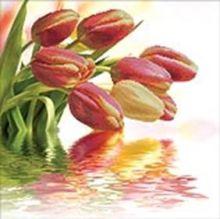 - Наборы для вышивания 11ст. Весенние тюльпаны (7044-3D) обложка книги