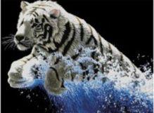 - Наборы для вышивания 11ст. Белый тигр (7071-3D) обложка книги