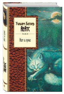 Кот и луна обложка книги