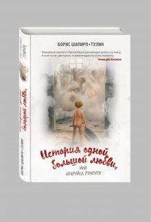 Шапиро-Тулин Б. - История одной большой любви, или Бобруйск forever обложка книги