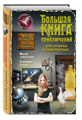 Большая книга приключений для храбрых и любопытных Волынская И., Кащеев К.