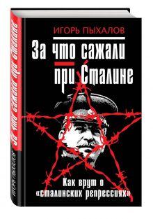За что сажали при Сталине. Как врут о «сталинских репрессиях» обложка книги