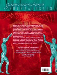 Обложка сзади Тело человека: иллюстрированный путеводитель Дмитрий Лукашанец, Оксана Мазур, Татьяна Никитинская