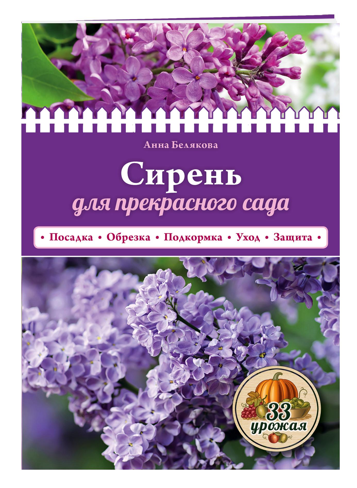 Сирень для прекрасного сада ( Белякова А.В.  )