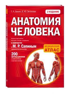 Билич Г.Л., Зигалова Е.Ю. - Анатомия человека: 2 издание обложка книги