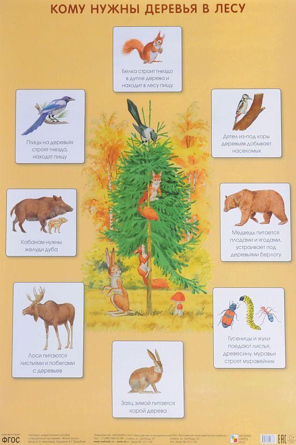 Кому нужны деревья в лесу (Плакаты) Николаева С. Н