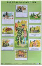 ПЛ Как лесник заботится о лесе