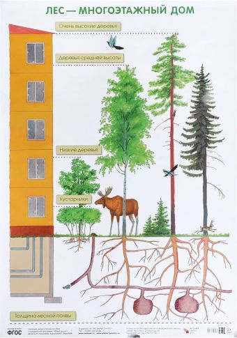 ПЛ Лес — многоэтажный дом Николаева С. Н