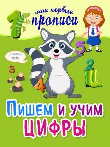 Воронко А.В. - Пишем и учим цифры обложка книги