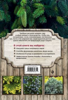 Обложка сзади Красивые хвойные для вашего сада Ольга Городец