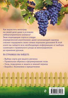 Обложка сзади Виноград. Урожайная лоза (нов.оф) Анна Белякова