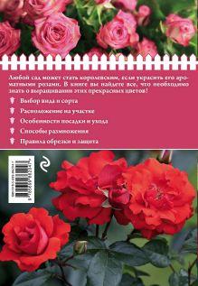 Обложка сзади Розы на дачном участке (нов.оф.) Анна Белякова