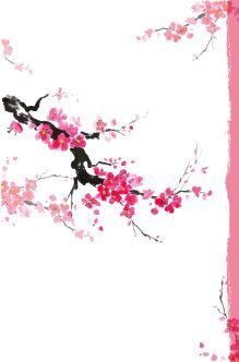 Обложка сзади Sakura Dream. 5 лет в гармонии с собой