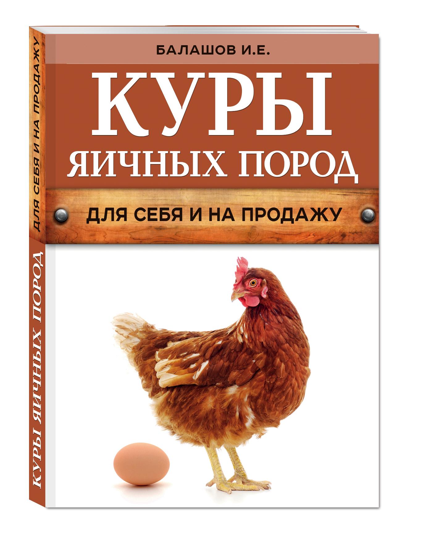 Куры яичных пород (нов.оф.) ( Балашов И.Е.  )