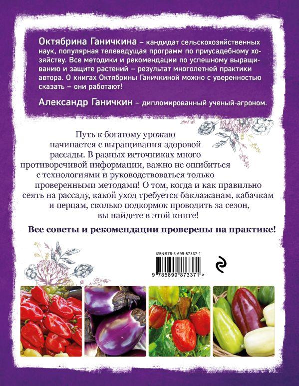 Как сделать аджику из кабачков и помидор 33