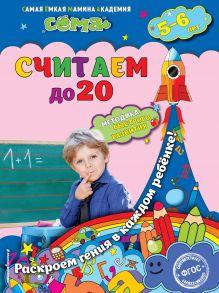 Липина С.В., Маланка Т.Г. - Считаем до 20: для детей 5-6 лет обложка книги