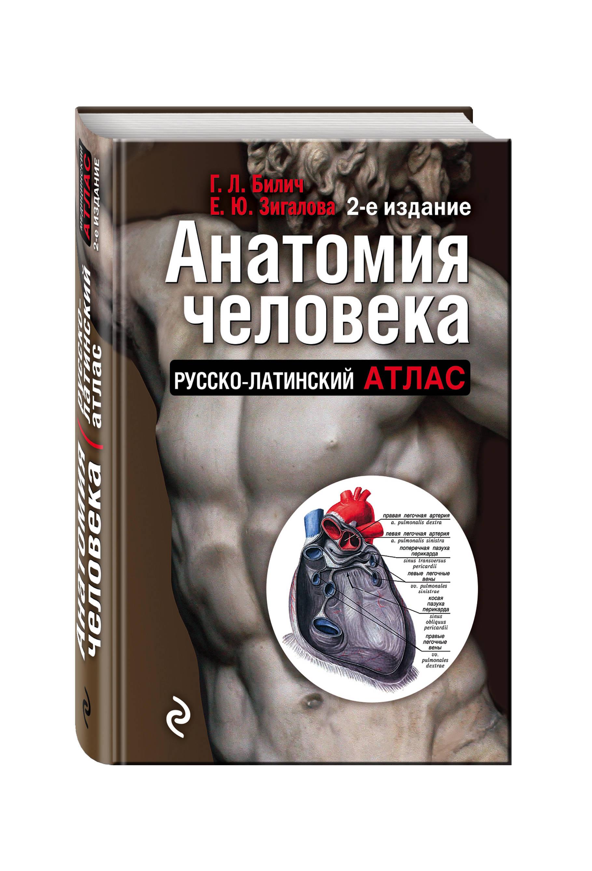 Билич Г.Л., Зигалова Е.Ю. Анатомия человека: Русско-латинский атлас. 2-е издание анна спектор большой иллюстрированный атлас анатомии человека