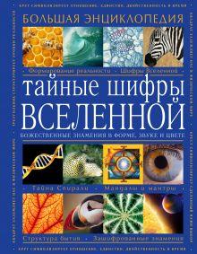 - Тайные шифры вселенной. Божественные знамения в форме, звуке и цвете обложка книги