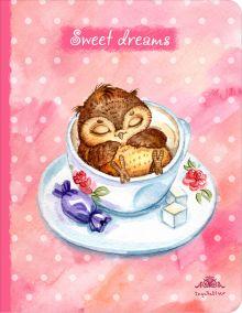 Обложка Блокнот. Sweet dreams (большой)