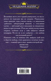 Обложка сзади Игра в дракошки-мышки Эльвира Плотникова