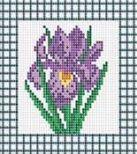034-ST-PS Фиолетовый ирис