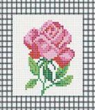 035-ST-PS Розовая роза
