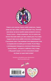 Обложка сзади Крылатое приключение Наталия Кузнецова