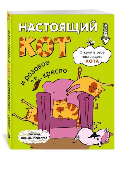 Блокнот. Настоящий кот и розовое кресло