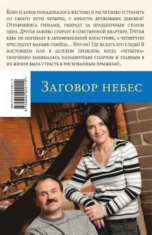 Обложка сзади Заговор небес Анна и Сергей Литвиновы