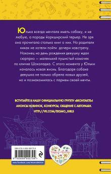 Обложка сзади Счастье по кличке Шоколадка Алина Кускова