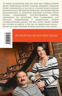 Обложка сзади Второй раз не воскреснешь Анна и Сергей Литвиновы